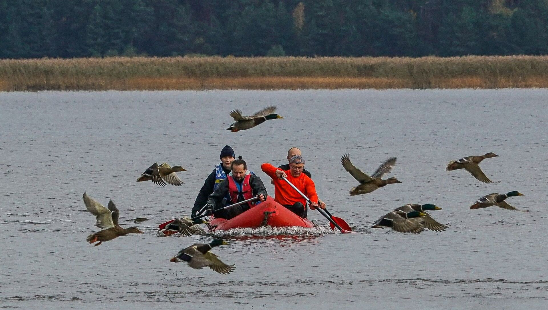 Лодка команды Латвийского антинацистского комитета третий раз подряд финиширует первой - Sputnik Латвия, 1920, 09.04.2021