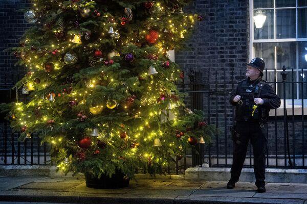 Полицейский у рождественской елки в Лондоне  - Sputnik Латвия