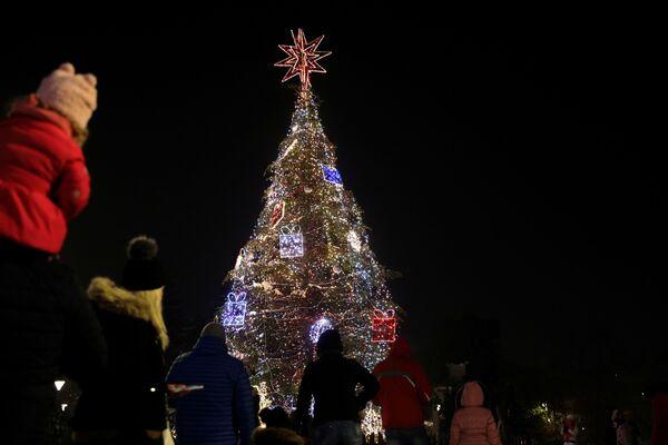 Рождественская ель в Софии, Болгария - Sputnik Латвия
