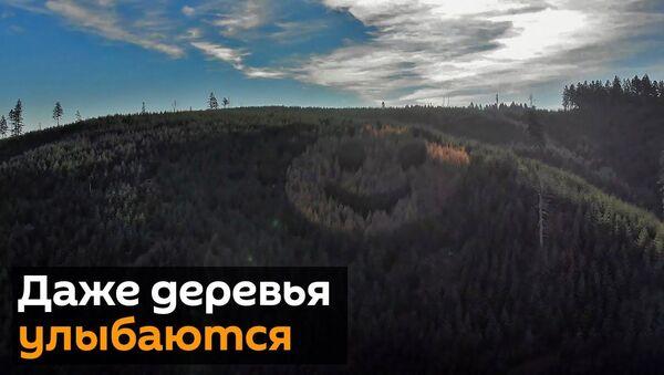 Смайлик на холме: в Америке улыбаются даже деревья - Sputnik Latvija