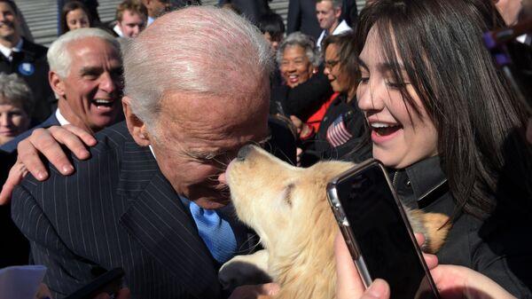 Бывший вице-президент Джо Байден с собакой в Вашингтоне  - Sputnik Латвия
