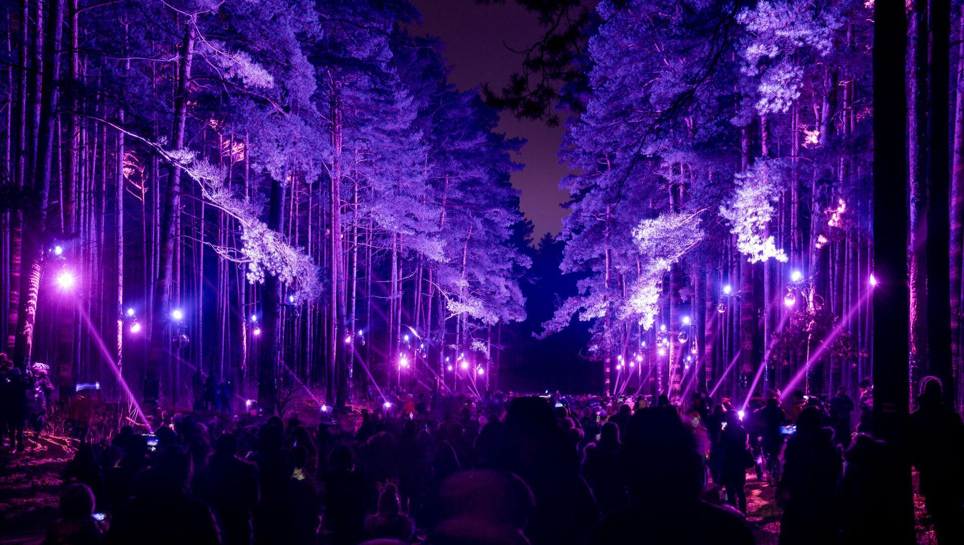 Световая инсталляция  «В саду Зазеркалья» в Бикерниекском лесу бьет рекорды посещаемости - Sputnik Латвия, 1920, 22.05.2021