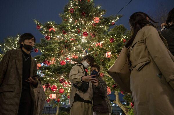 Пара делает фотографии с рождественской елкой в Токио - Sputnik Latvija