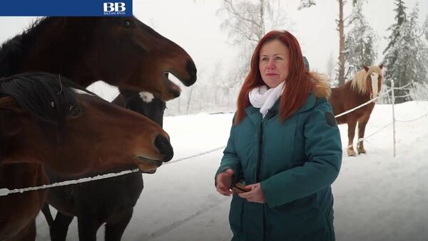 Конец туризму в Латвии? Хутор в Краславской области доказывает, что это не так - Sputnik Латвия