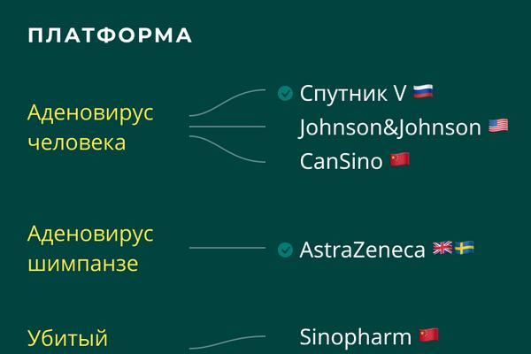 Вакцины от COVID-19: на каких платформах основаны вакцины - Sputnik Латвия