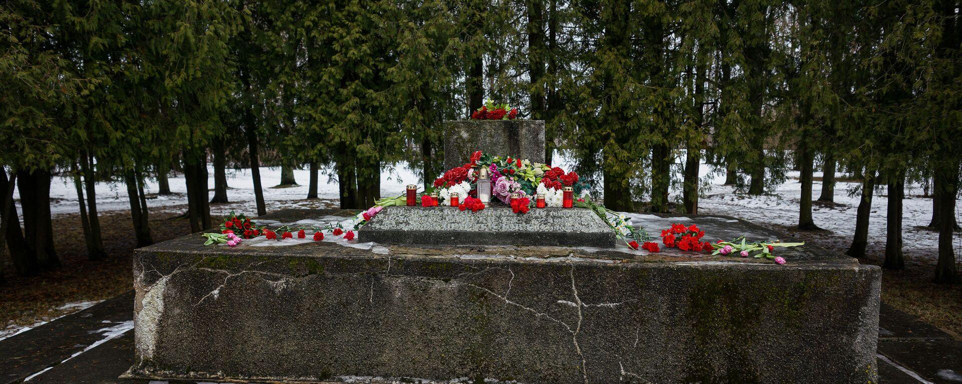 В ночь на 24 февраля в Екабпилсе вандалы украли пушку ЗиС-3 с могилы героев-освободителей Екабпилса от нацистских захватчиков - Sputnik Латвия, 1920, 20.03.2021