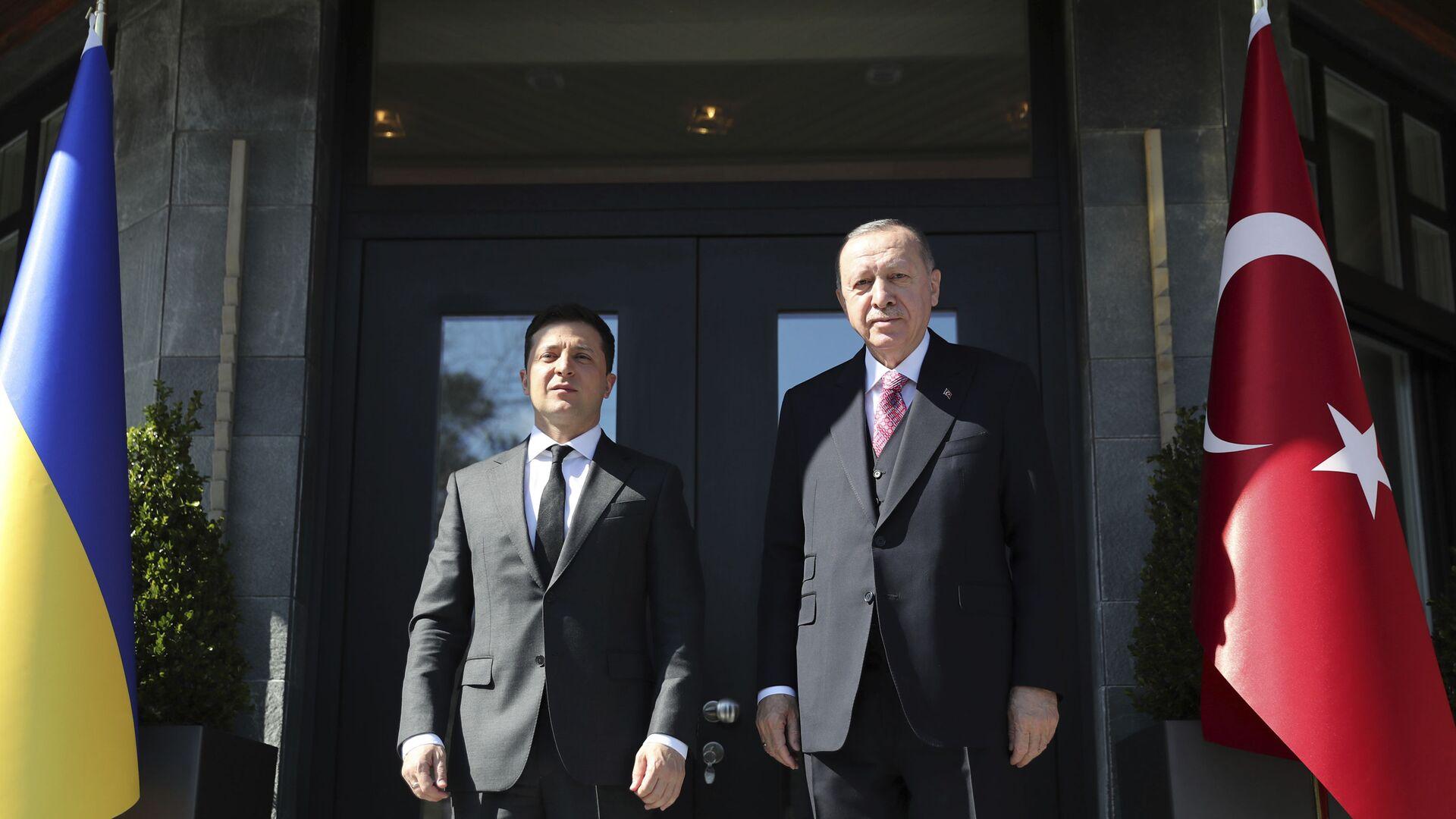 Президент Украины Владимир Зеленский и президент Турции Реджеп Тайип Эрдоган - Sputnik Латвия, 1920, 12.04.2021