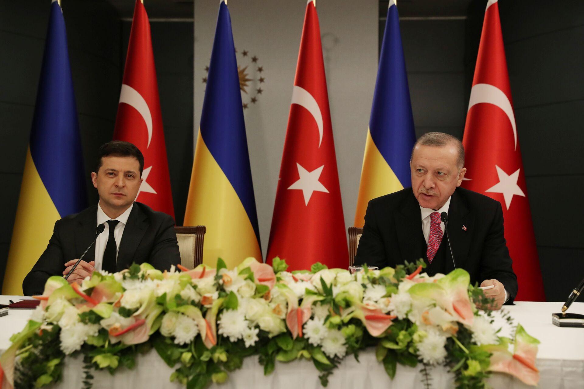 Президент Украины Владимир Зеленский и президент Турции Реджеп Тайип Эрдоган - Sputnik Латвия, 1920, 01.06.2021