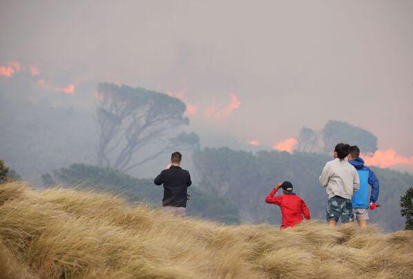 Vietējie iedzīvotāji vēro meža ugunsgrēku Galda kalna nogāzēs Keiptaunā - Sputnik Latvija