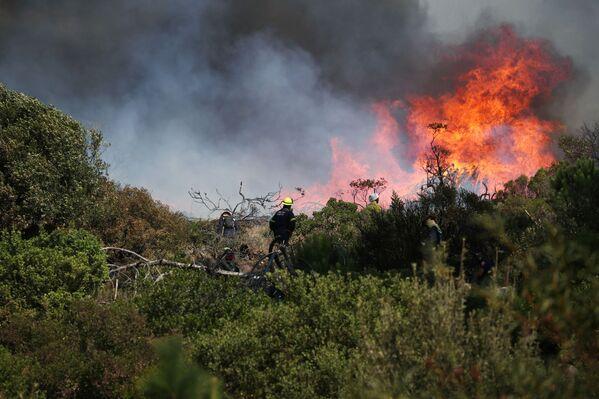 Ugunsdzēsēji pūlas apturēt meža ugunsgrēku, kas uzliesmoja Galda kalna nogāzēs - Sputnik Latvija
