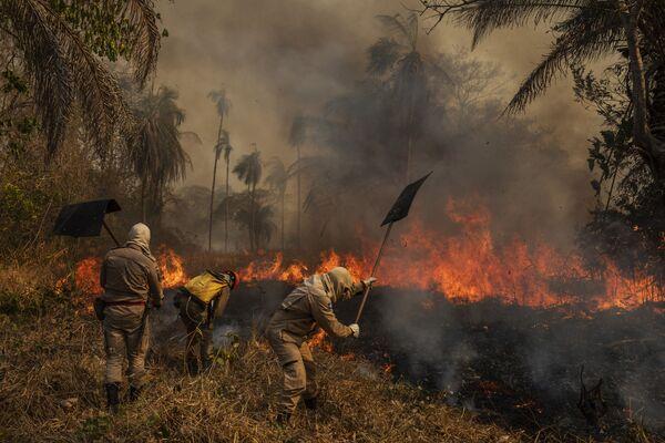 Fotogrāfa Lalo de Almedia (Brazīlija) darbu sērija Pantanala liesmās ieņēma pirmo vietu kategorijā Apkārtējā vide - Sputnik Latvija
