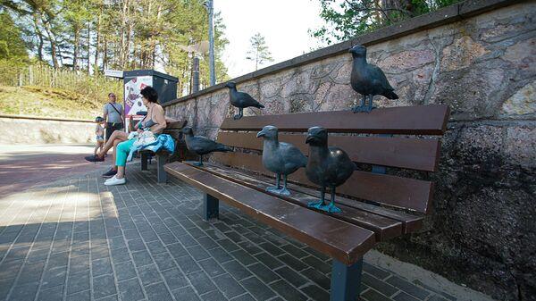 Арт-объект скамейка с чайками в Юрмале - Sputnik Латвия