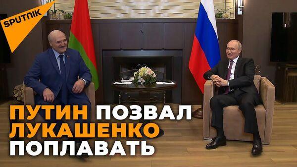 Погода хорошая: президенты России и Беларуси на переговорах в Сочи - Sputnik Latvija