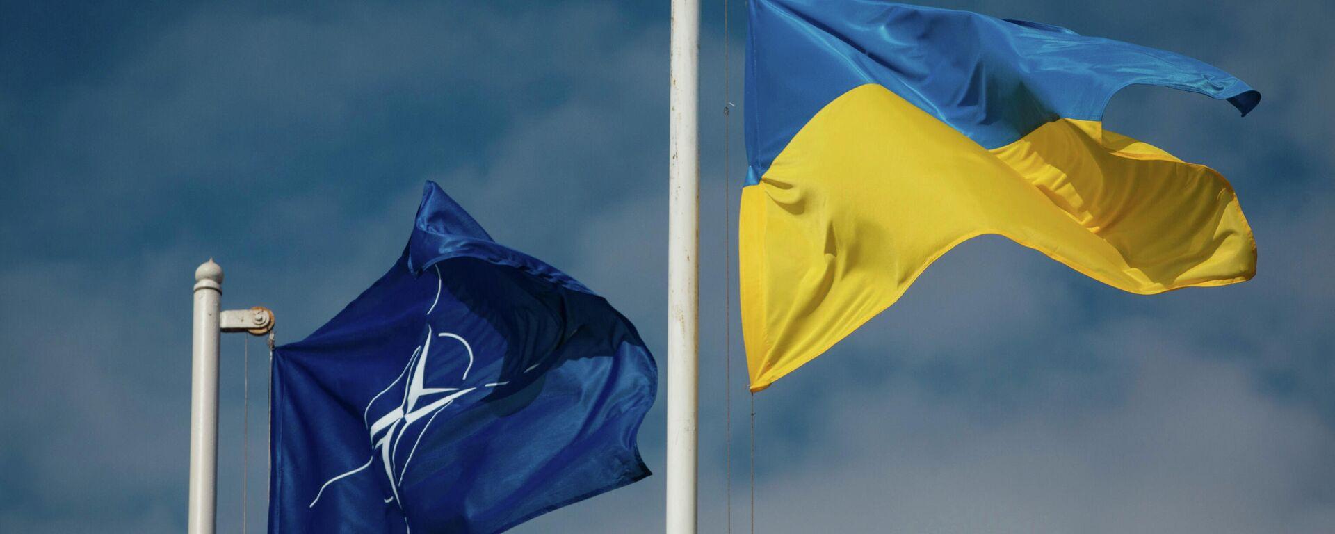 Национальный флаг Украины и флаг Организации Североатлантического договора (НАТО) - Sputnik Латвия, 1920, 16.06.2021