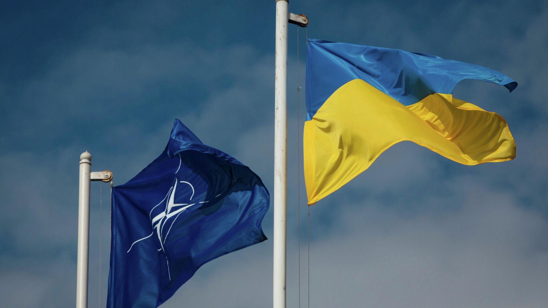 Национальный флаг Украины и флаг Организации Североатлантического договора (НАТО) - Sputnik Латвия, 1920, 07.09.2021