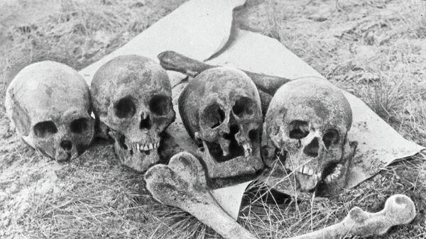 Черепа и кости жертв нацистов и их эстонских пособников - Sputnik Latvija