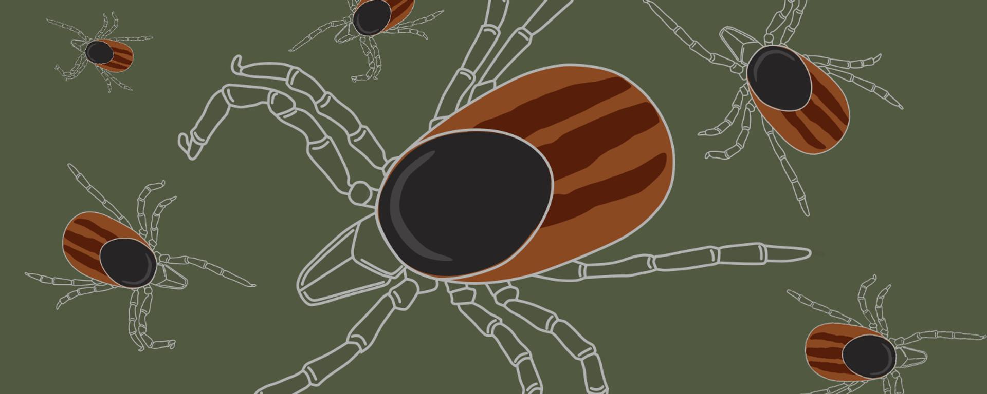 Защита от лесного клеща - Sputnik Латвия, 1920, 30.06.2021