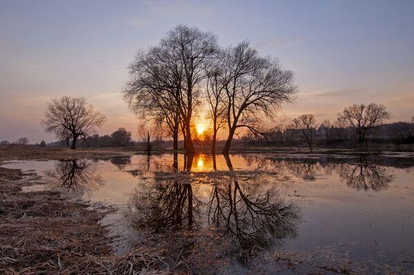 Снимок Апельсиновый закат на Москве-реке Анны Тыщенко, ставший одним из победителей фотоконкурса «Моя Планета. Россия в деталях» - Sputnik Латвия