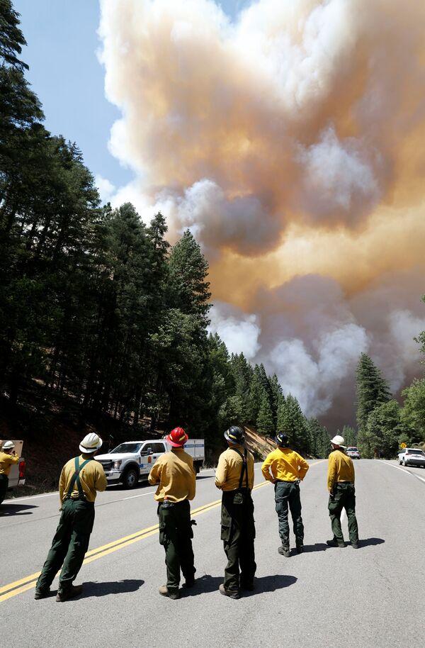 Пожарные наблюдают за клубами дыма от пожаров в штате Калифорния, США  - Sputnik Латвия