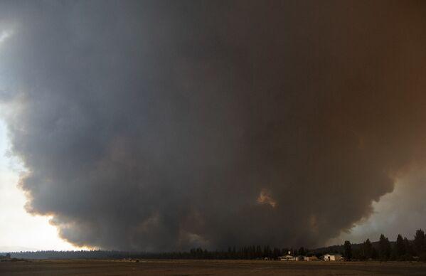 Темный шлейф дыма от пожара, Калифорния - Sputnik Латвия