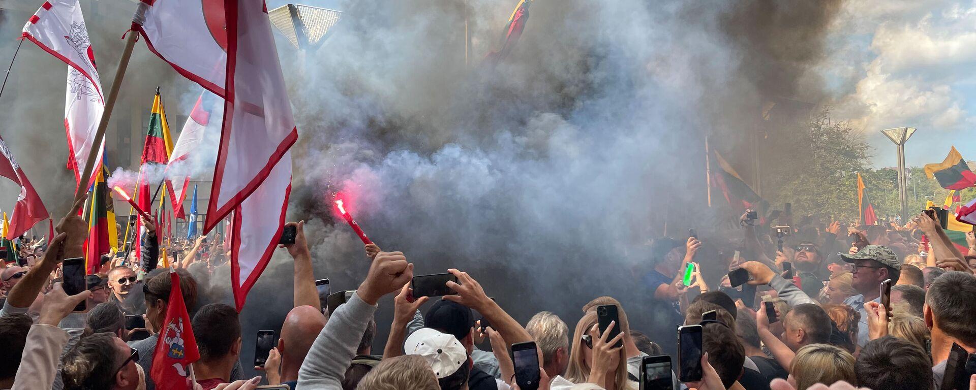 В Литве тысячи жителей вышли на митинг против политики властей - Sputnik Латвия, 1920, 10.08.2021