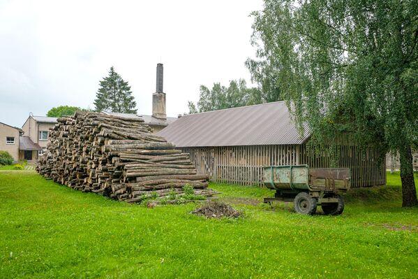 Заготовленные на зиму дрова лежат на территории закрытой школы. - Sputnik Латвия