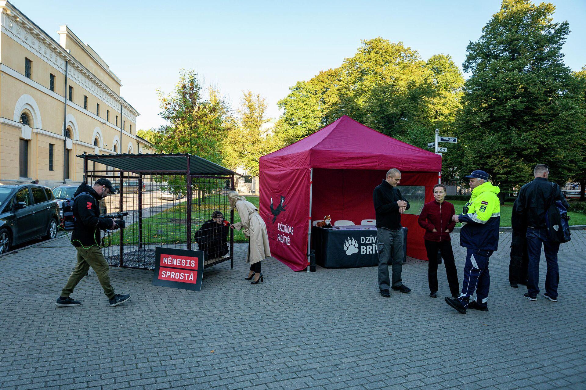 Пикет защитников животных у Сейма. В течение месяца активисты проведут время в клетке - Sputnik Латвия, 1920, 16.09.2021