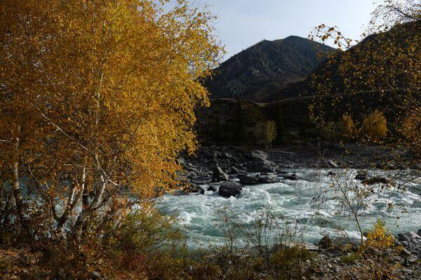 Tūristi, kas nesen apciemojuši Altaju, iesaka: izvēlieties rudeni! Ceļotāju ir mazāk, taču laika apstākļi vēl ir komfortabli un skaistums – neiedomājams. Katuņas upes kreisajā krastā ir unikālās Tavdas alas, līdz tām ved stāvas kāpnes. Tūristiem iesaka izvēlēties komfortablu apģērbu un sporta apavus - Sputnik Latvija
