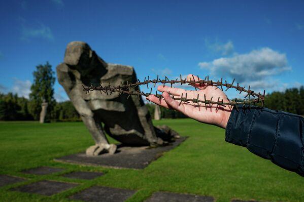 Dzeloņstieple no Salaspils koncentrācijas nometnes nožogojuma - Sputnik Latvija
