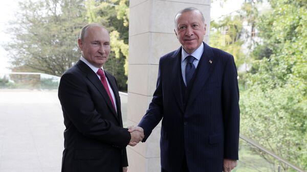 У кого титры выше: Путин и Эрдоган померились антителами к коронавирусу - Sputnik Латвия