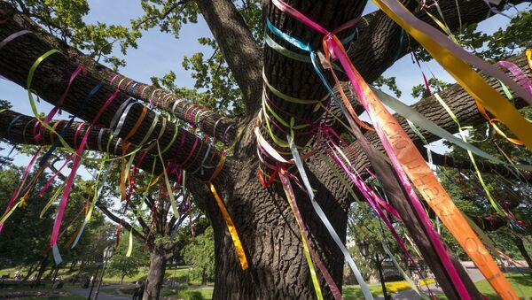 Ленточки на дереве в Риге - Sputnik Латвия