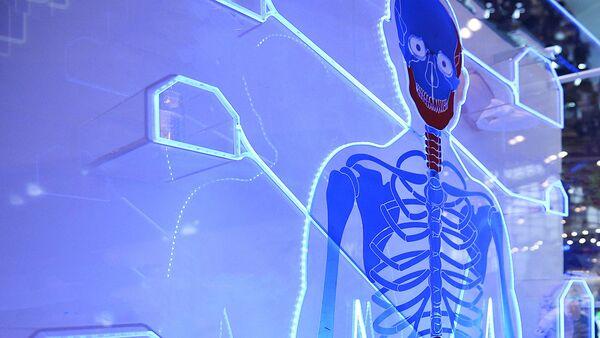 Скелет человека на электронном стенде - Sputnik Латвия