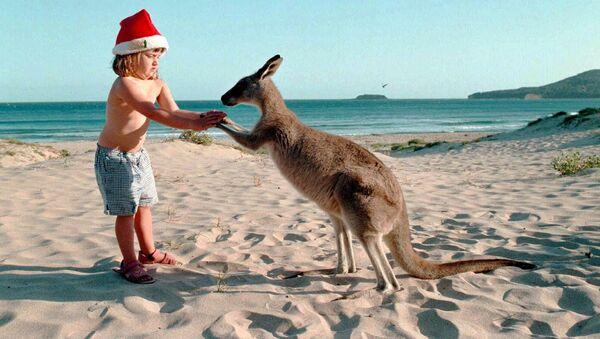 Девочка с кенгуру на пляже накануне Рождества в Австралии  - Sputnik Латвия