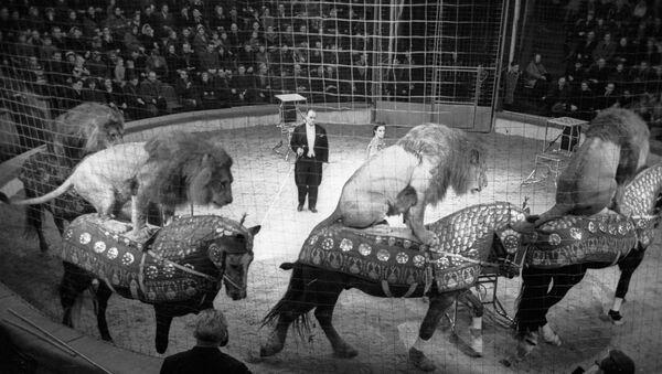 Дрессировщики, заслуженные артисты РСФСР Александр Буслаев (справа) и Тамара Буслаева (справа) выступают на арене Рижского цирка - Sputnik Latvija