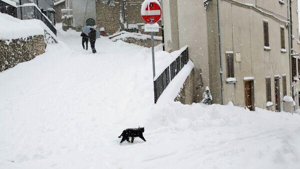 Кошка в снегу в Италии  - Sputnik Latvija