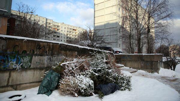 Снег в Риге - Sputnik Латвия