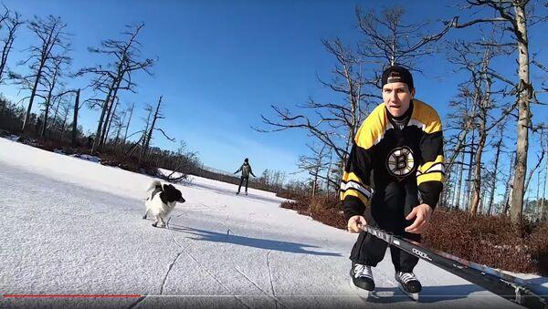 Катание на коньках по болоту - Sputnik Латвия