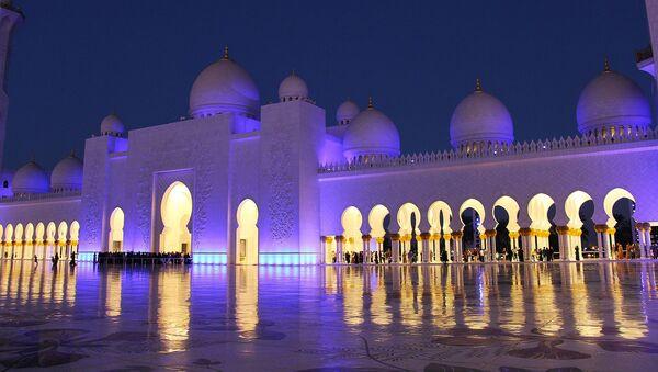 Подсвеченная ночью мечеть шейха Зайда в Абу-Даби - Sputnik Latvija