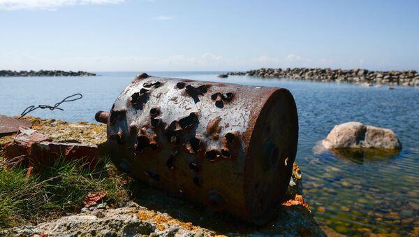 Остров Большой Тютерс в Финском заливе. - Sputnik Латвия