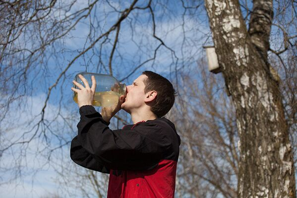 Березовый сок особенно популярен у людей, которые ведут здоровый образ жизни - Sputnik Латвия