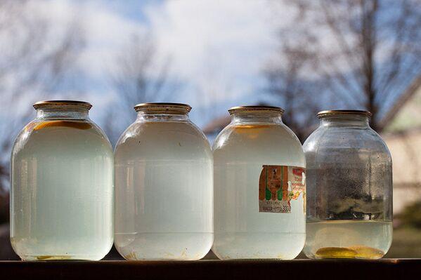 Березовый сок – очень популярный у белорусов напиток - Sputnik Латвия