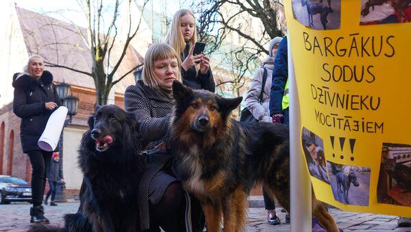 Пикет защитников животных у здания Сейма - Sputnik Латвия