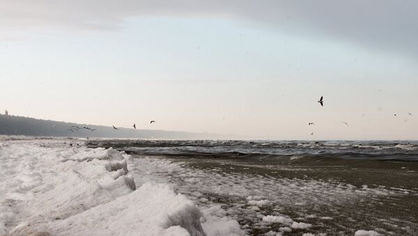 Зимний пляж в Юрмале - Sputnik Латвия