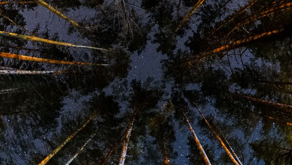 Звездное небо - Sputnik Латвия