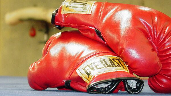 Боксерские перчатки. Архивное фото - Sputnik Латвия