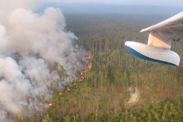 Лесной пожар в Богучанском районе Красноярского края, снятый с борта самолета Бе-200 - Sputnik Латвия