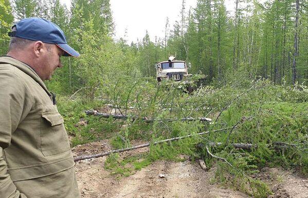 Работа по ликвидации последствий лесных пожаров в Якутии - Sputnik Латвия