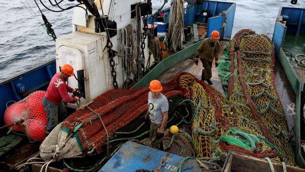 Выборка невода на рыболовном сейнере - Sputnik Латвия