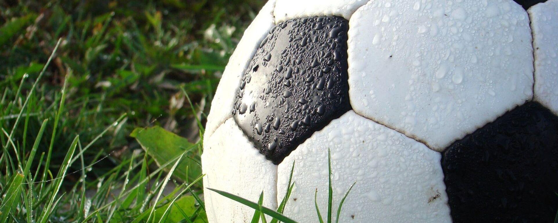 Футбольный мяч - Sputnik Латвия, 1920, 12.01.2021