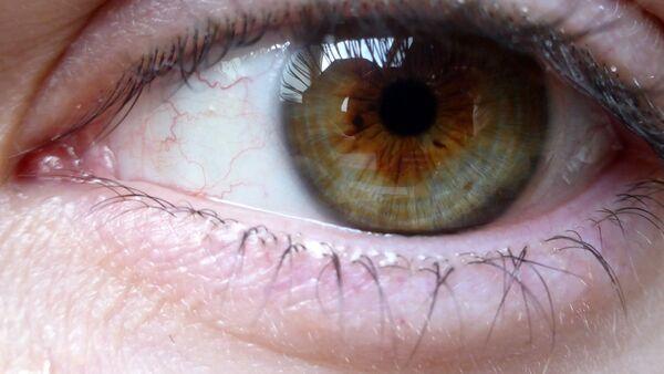 Глаз человека - Sputnik Латвия